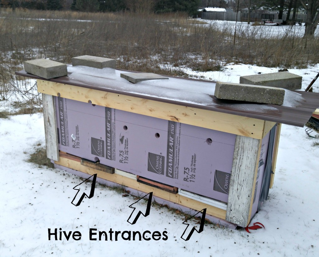 winterized hives enterances