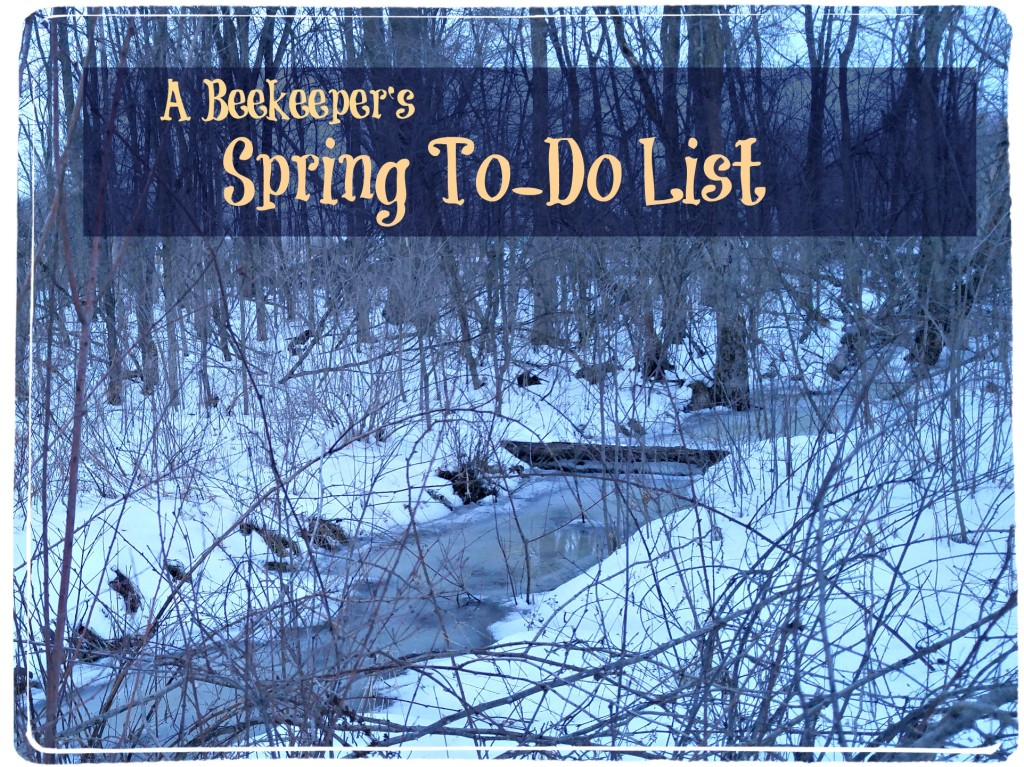 beekeepers spring to do list
